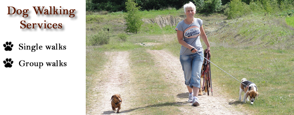 Dog walking Services Peterborough